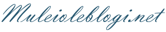 Mul ei ole blogi logo