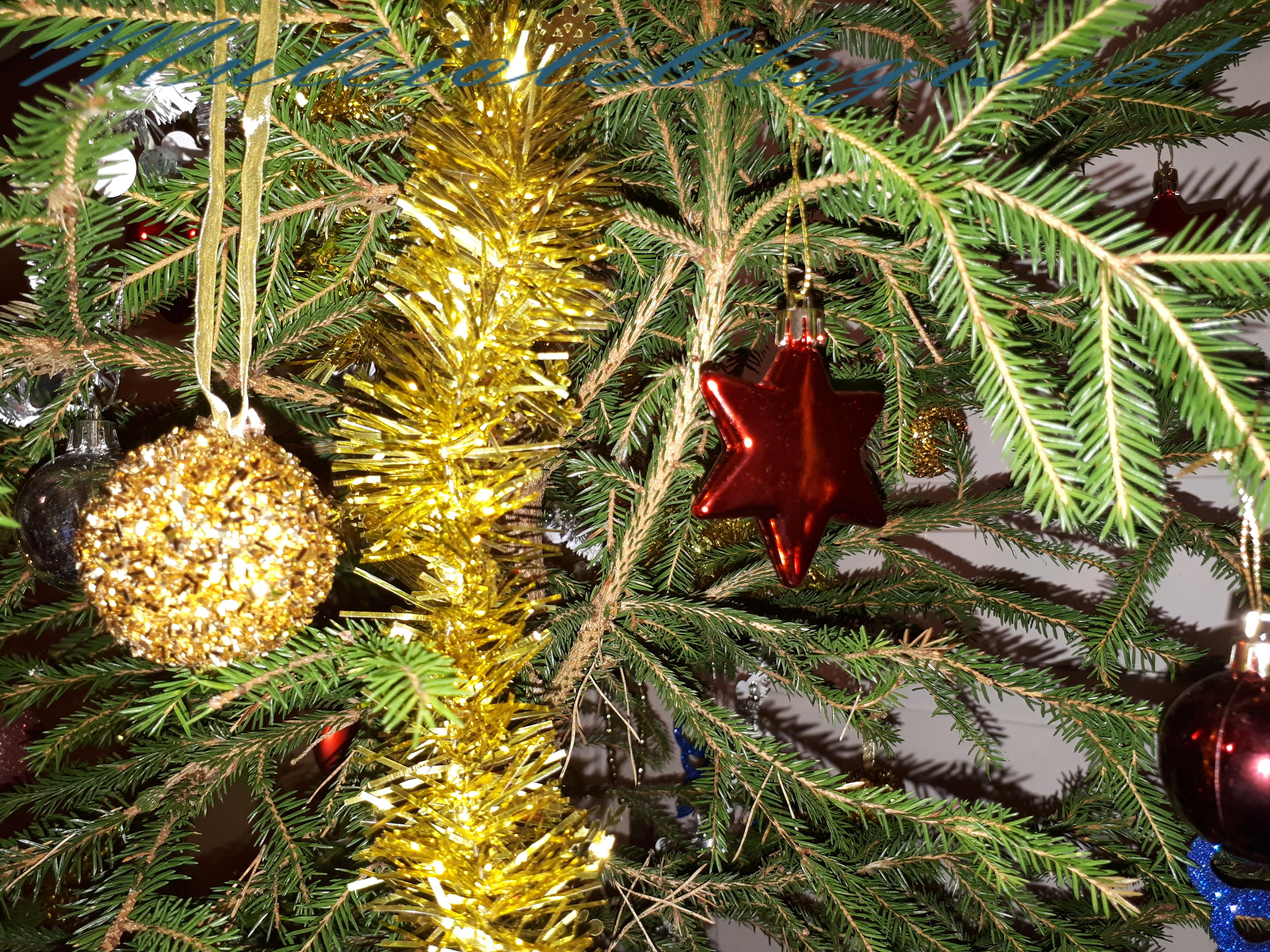 Jõuluaeg
